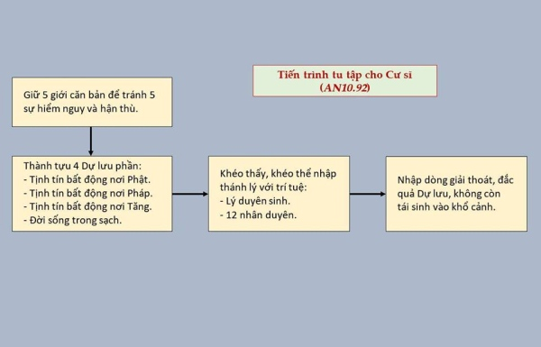 nguoiphattu_com_tien_trinh_tu_tap_cho_hang_cu_si00.jpg