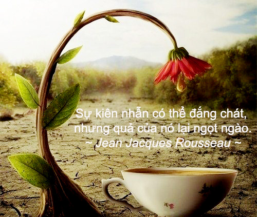 duc_phat_day_ve_tam_suc_manh.jpg