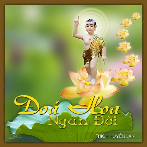 nguoiphattu_com_doa_hoa_ngan_doi_thich_huyen_lan1.jpg