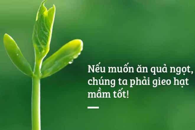 nhan_qua_va_luat_tuong_phan_luat_doi_khang_.jpg