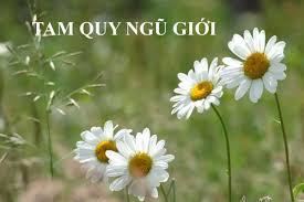 tam_quy_ngu_gioi1.jpg