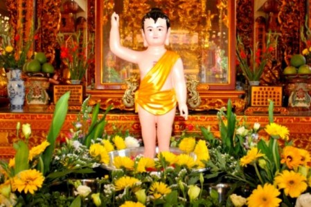 Cảm niệm ngày Phật đản