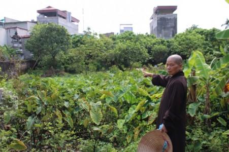 Hưng Yên: Chùa Nễ Châu 'Di tích Quốc gia đặc biệt ' kêu cứu