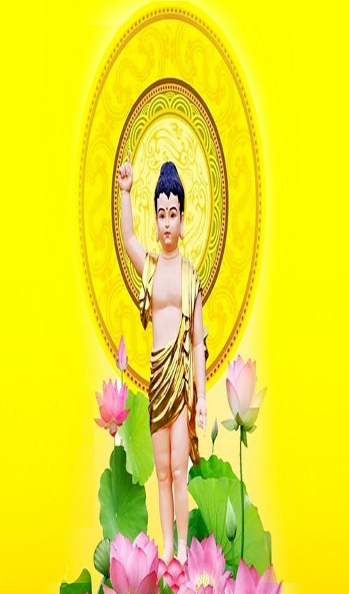 Chương trình tổ chức Đại lễ Phật đản PL 2565