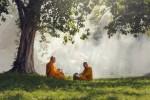 Phật dạy người xuất gia nên thân cận và nương tựa ai?