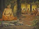 Lý tưởng của người Bồ-tát - Lịch sử Phật giáo (Bài 13)