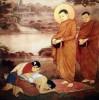 Mười đức lành của Người Phật tử