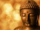 Những câu danh ngôn thiền ngữ cho người Phật tử
