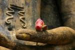32 tướng tốt của Phật của Phật theo các bản kinh