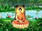 Kính mừng ngày Đức Phật thành đạo