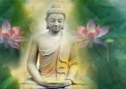 Tại sao trong Kinh Nikaya không thấy ghi nhận Phật Thích Ca niêm hoa, truyền pháp cho Ngài Ca Diếp?