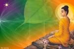Ý nghĩa Đức Phật thành đạo