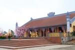 Chùm ảnh, ngày xuân về thăm chùa Hữu Lạc