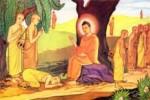 Đức Phật dạy các Tỳ kheo pháp môn về khu rừng