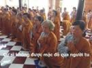 Khi Phật tử tại gia đắp y người xuất gia