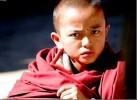 Phật dạy cách nhận diện một ác Tỷ kheo