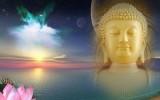 Nhân mùa Phật đản: Tìm hiểu về giáo lý, giáo điều căn bản của đạo Phật