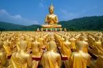 Đức Phật đã dạy những gì? 'What The Buddha Taught'