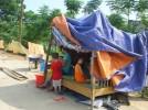 Phật giáo Thanh Hóa kêu gọi ủng hộ cứu trợ lũ lụt tại Thanh Hóa và các tỉnh