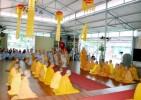 Sẽ tổ chức tọa đàm 'Định hướng phát triển bền vững Phật giáo Nghệ An'