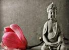 Phật dạy về pháp lãnh đạo