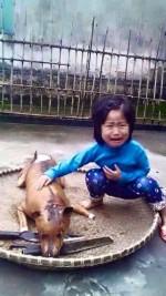 Xúc động với bức ảnh bé gái nức nở bên chú chó bị giết