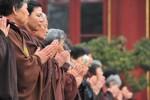 Người Phật tử không thể 'tìm sen tách khỏi bùn'