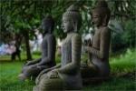 Một số câu, cụm từ liên quan đến Phật giáo cần bàn luận