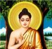 Ý nghĩa danh hiệu Đức Phật Thích Ca Mâu Ni