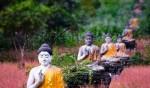 Muốn tìm hiểu Phật giáo hãy đọc bài viết này