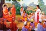 Quan điểm của Đức Phật về khen chê như thế nào