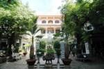 Đầu xuân vãn cảnh ngôi chùa cổ có cây 'lão mai' cao 12m